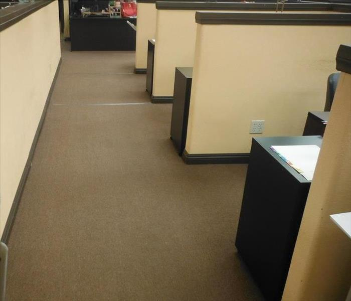 A commercial office post water flooding cleanup shows dry carpet and materials.