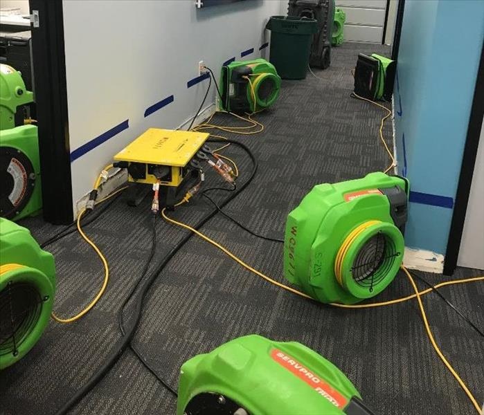 Our bright lime green drying equipment is placed in wet hallway and rooms of a local business that called for help.