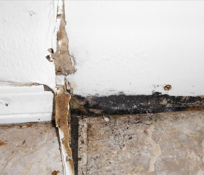 Flood water with dirt and debris covers tile floor. Half the baseboard is removed reveling mold behind it on the wall.