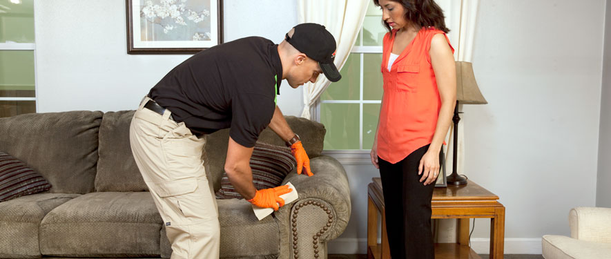 West Covinia, CA carpet upholstery cleaning