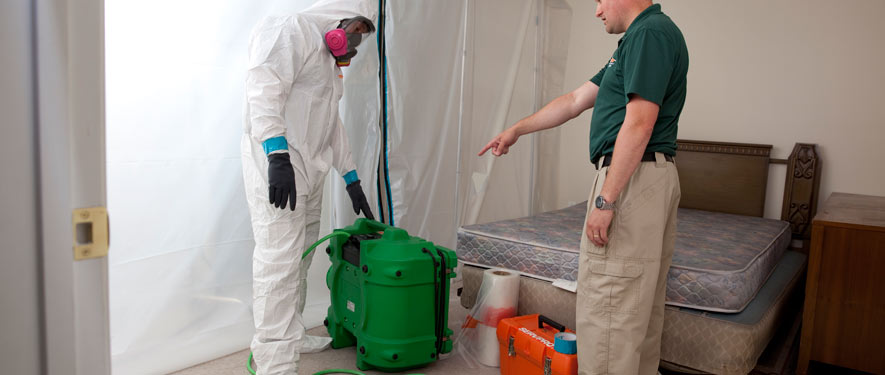 West Covina, CA mold removal process